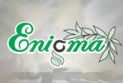 enigma-plant.ro